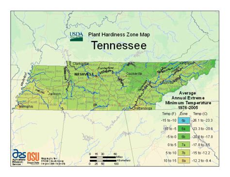 Gardening Information for Middle TN - Spring Hill Tn