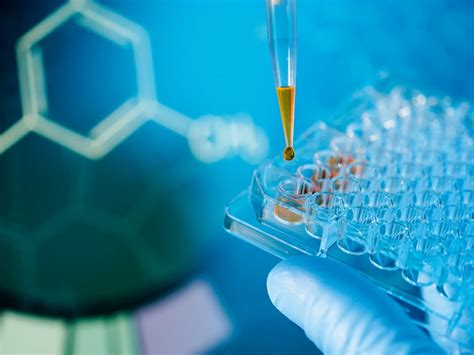 ImmuPharma sets its sights high for drug development – The