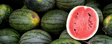Helpful Tips for Picking a Watermelon   BestFoodFacts