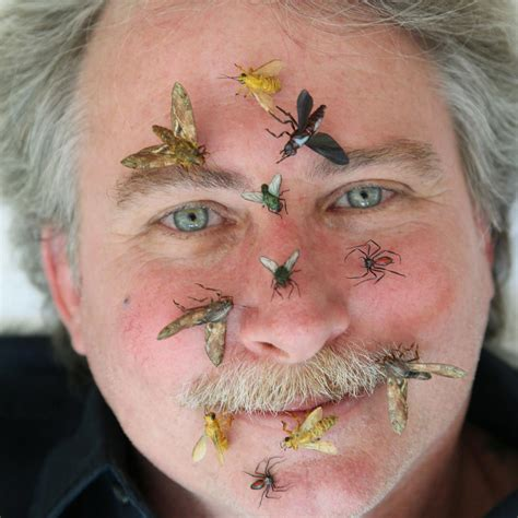 Prop insect artist creates a buzz in Hollywood   Movies