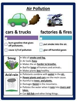 Pollution and Conservation Study Guide by Cammie's Corner