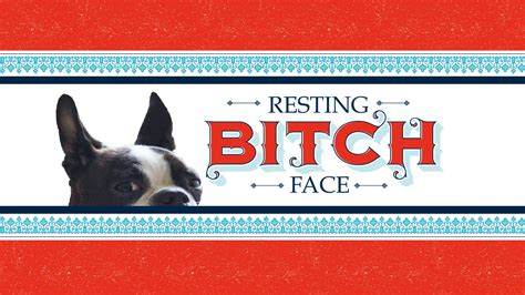 Resting Bitch Face: A Comedic Photobook of Sleeping Dogs