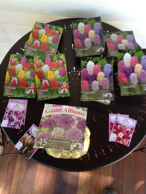 Planting Fall Flowers and Spring Bulbs – Frugal Living